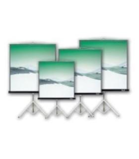 """Monitor HP ProDisplay P203 - Monitor LED - 20"""""""