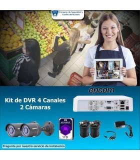 Grabadora de voz digital Sony icdpx370 Mono con USB