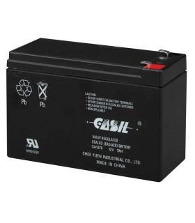 712BNP Honeywell - 712BNP Battery LEAD -